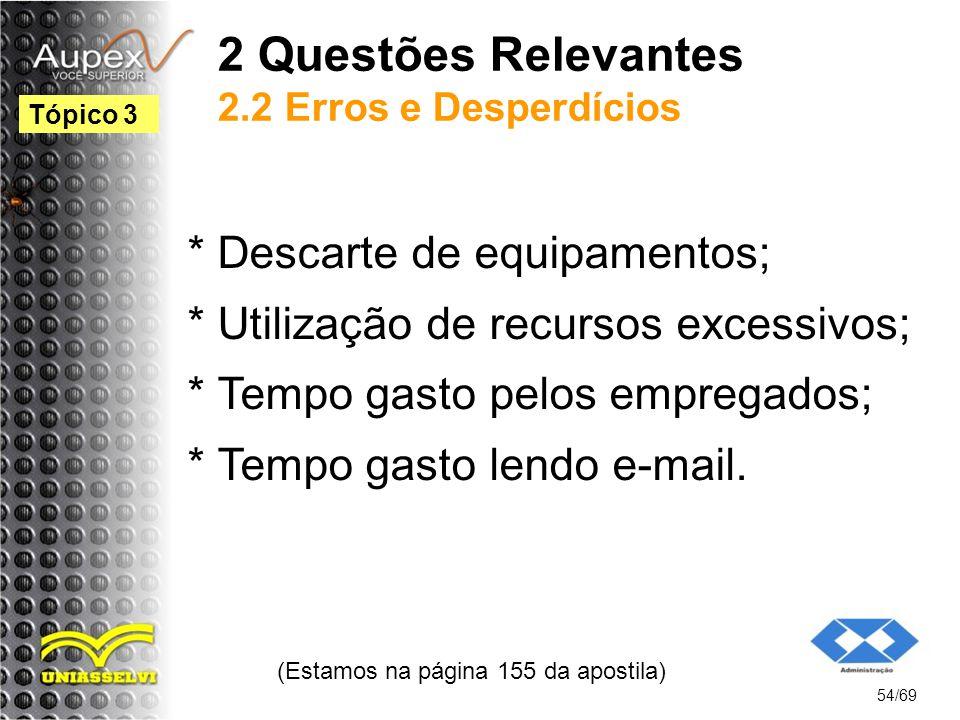 2 Questões Relevantes 2.2 Erros e Desperdícios * Descarte de equipamentos; * Utilização de recursos excessivos; * Tempo gasto pelos empregados; * Tempo gasto lendo e-mail.
