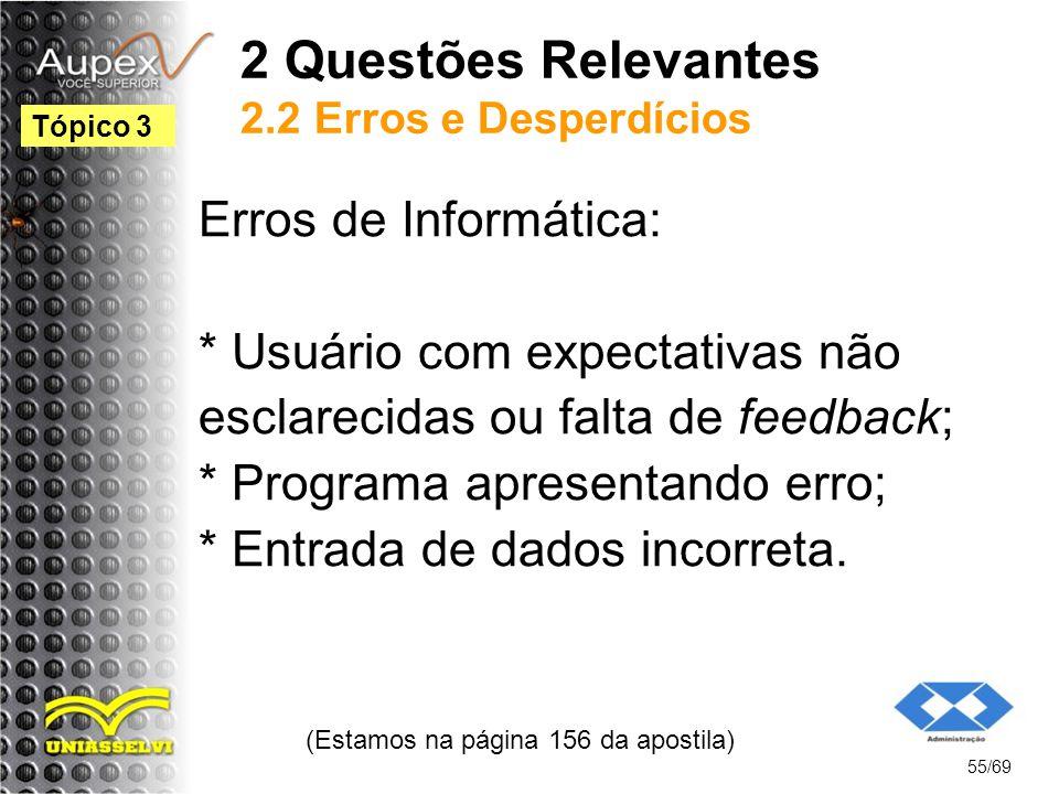 2 Questões Relevantes 2.2 Erros e Desperdícios Erros de Informática: * Usuário com expectativas não esclarecidas ou falta de feedback; * Programa apresentando erro; * Entrada de dados incorreta.