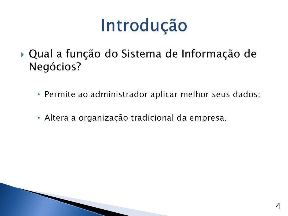  Qual a função do Sistema de Informação de Negócios? Permite ao administrador aplicar melhor seus dados; Altera a organização tradicional da empresa.