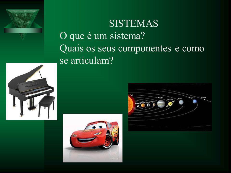 SISTEMAS O que é um sistema? Quais os seus componentes e como se articulam?
