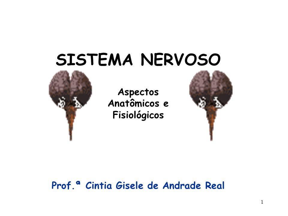 1 SISTEMA NERVOSO Prof.ª Cintia Gisele de Andrade Real Aspectos Anatômicos e Fisiológicos