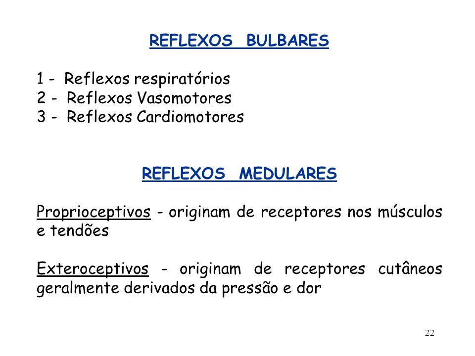 22 REFLEXOS BULBARES 1 - Reflexos respiratórios 2 - Reflexos Vasomotores 3 - Reflexos Cardiomotores REFLEXOS MEDULARES Proprioceptivos - originam de r