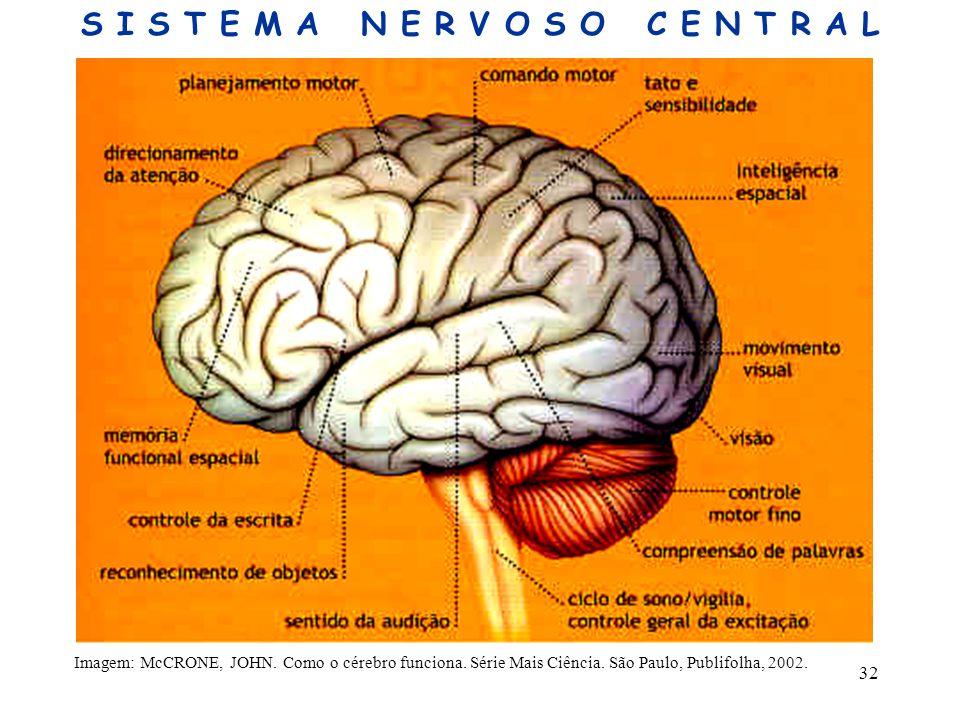 32 Imagem: McCRONE, JOHN. Como o cérebro funciona. Série Mais Ciência. São Paulo, Publifolha, 2002. S I S T E M A N E R V O S O C E N T R A L