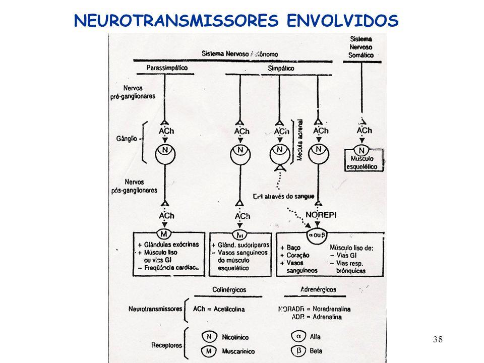 38 NEUROTRANSMISSORES ENVOLVIDOS