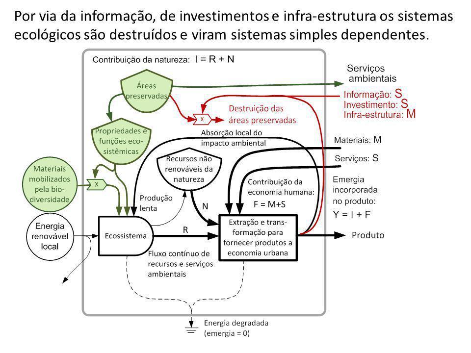 Por via da informação, de investimentos e infra-estrutura os sistemas ecológicos são destruídos e viram sistemas simples dependentes.