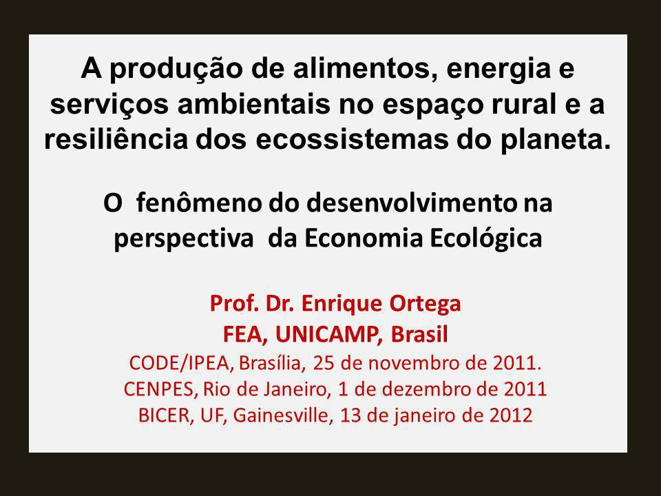 A produção de alimentos, energia e serviços ambientais no espaço rural e a resiliência dos ecossistemas do planeta. Prof. Dr. Enrique Ortega FEA, UNIC