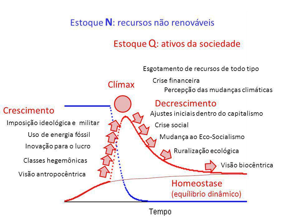 Estoque N : recursos não renováveis Estoque Q : ativos da sociedade Visão antropocêntrica Classes hegemônicas Inovação para o lucro Uso de energia fós