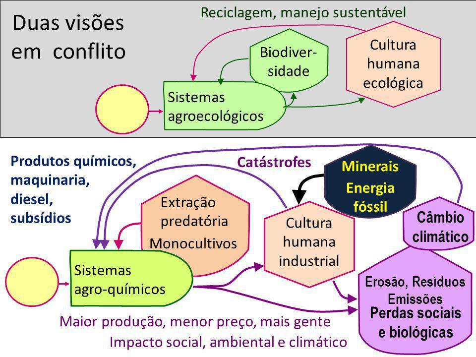 Minerais Energia fóssil Monocultivos Extração predatória Duas visões em conflito Cultura humana ecológica Sistemas agro-químicos Biodiver- sidade Cult