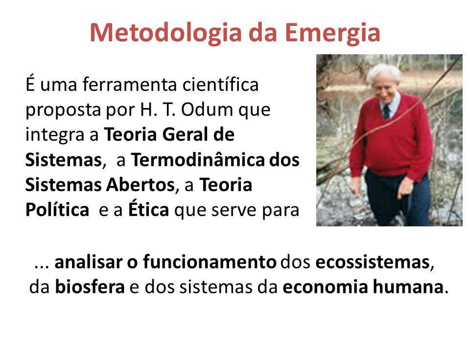 Metodologia Emergética Propõe uma síntese (da totalidade do sistema) e exige a elaboração de um diagrama do sistema antes de medir os fluxos de entrada e saída e os estoques internos, e depois converter esses valores em fluxos de trabalho realizado (emergia= exergia intrínseca + exergia agregada) para fazer o diagnóstico (e o prognóstico) do sistema avaliando os índices emergéticos (razões entre os fluxos agregados de emergia).