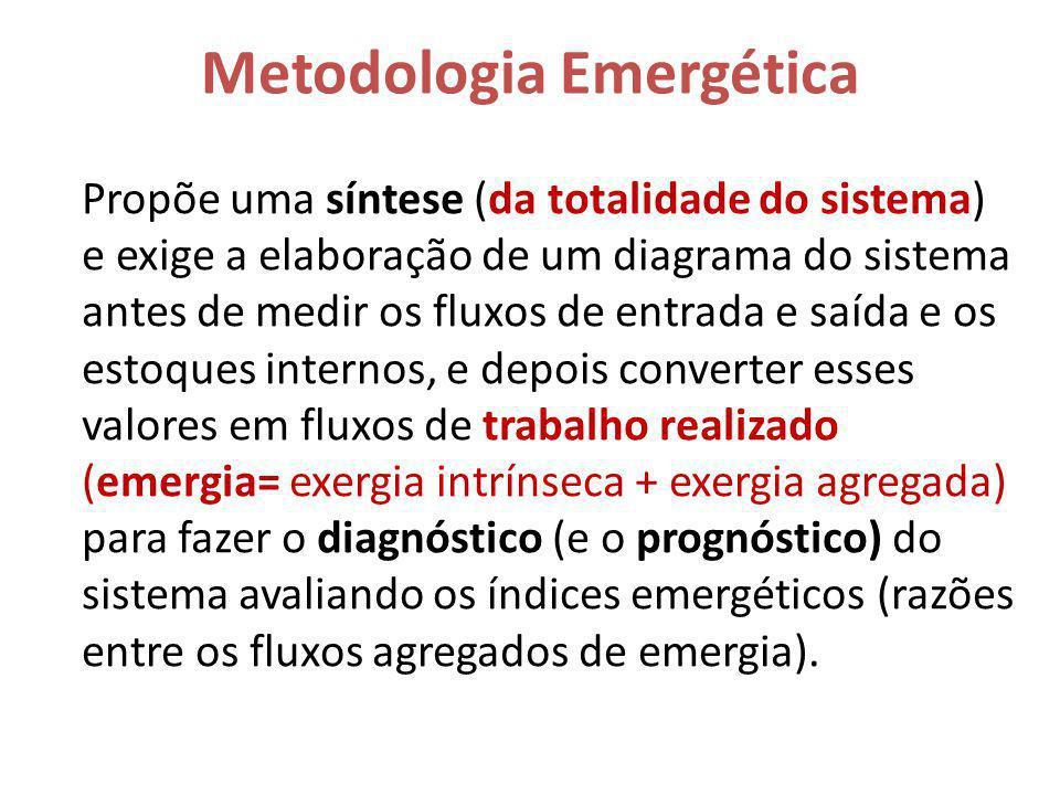 Metodologia Emergética Propõe uma síntese (da totalidade do sistema) e exige a elaboração de um diagrama do sistema antes de medir os fluxos de entrad