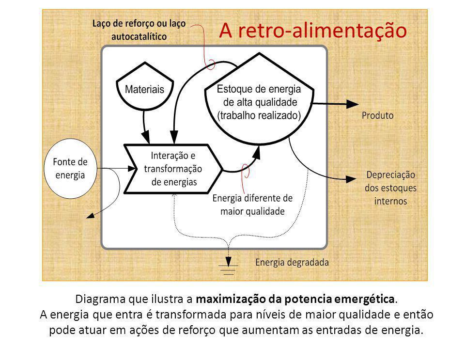 Diagrama que ilustra a maximização da potencia emergética. A energia que entra é transformada para níveis de maior qualidade e então pode atuar em açõ