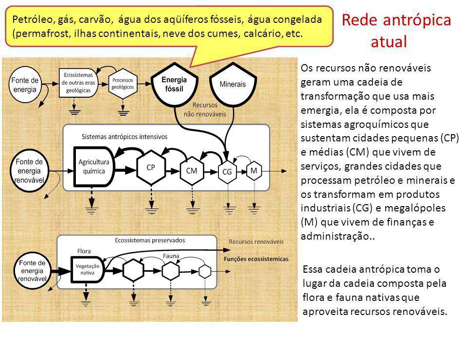 Renovabilidade: %Ren = 100 * R / (R+N+F) Razão entre no renováveis e renováveis:NR/R = (N+F) / R Razão de rendimento: EYR = Y / F Razão de Investimento: EIR = F/ (R+N) Razão de Carga Ambiental: ELR = (F+N) / R Diagrama do sistema econômico que usa entradas ambientais renováveis (R); entradas ambientais não renováveis (N) e os insumos comprados da economia (F).