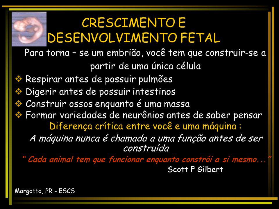 Consultem Avalia ç ão da Idade Gestacional Autor(es): Paulo R.