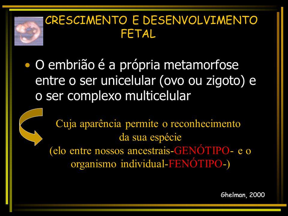 CRESCIMENTO E DESENVOLVIMENTO FETAL  Crescimento da Placenta Margotto, PR - ESCS Significado perinatal do peso da placenta Autor (s): Paulo R.