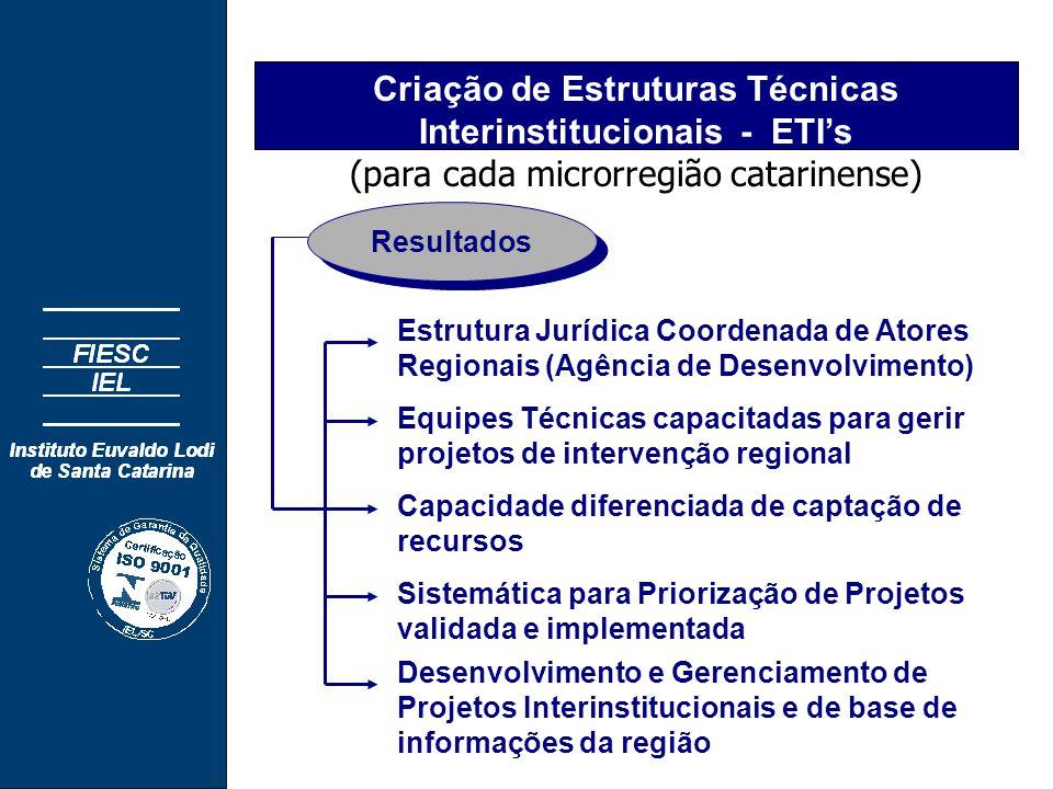 Criação de Estruturas Técnicas Interinstitucionais - ETI's (para cada microrregião catarinense) Estrutura Jurídica Coordenada de Atores Regionais (Agência de Desenvolvimento) Desenvolvimento e Gerenciamento de Projetos Interinstitucionais e de base de informações da região Capacidade diferenciada de captação de recursos Equipes Técnicas capacitadas para gerir projetos de intervenção regional Sistemática para Priorização de Projetos validada e implementada Resultados