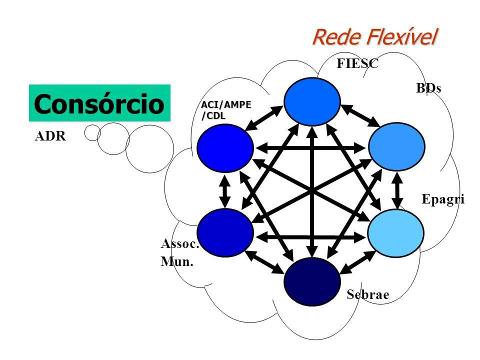 Rede Flexível Consórcio Assoc. Mun. Sebrae Epagri BDs ADR FIESC ACI/AMPE /CDL