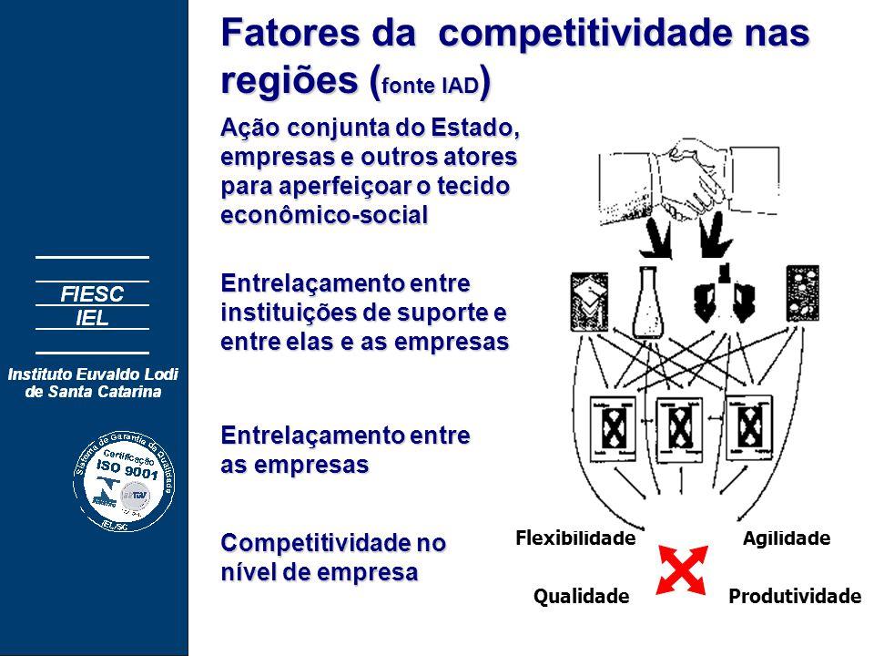 Flexibilidade Qualidade Agilidade Produtividade Competitividade no nível de empresa Ação conjunta do Estado, empresas e outros atores para aperfeiçoar o tecido econômico-social Entrelaçamento entre instituições de suporte e entre elas e as empresas Entrelaçamento entre as empresas Fatores da competitividade nas regiões ( fonte IAD )