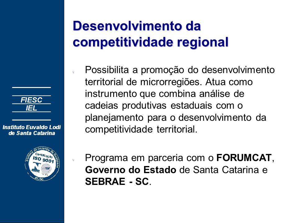 Desenvolvimento da competitividade regional n Possibilita a promoção do desenvolvimento territorial de microrregiões.