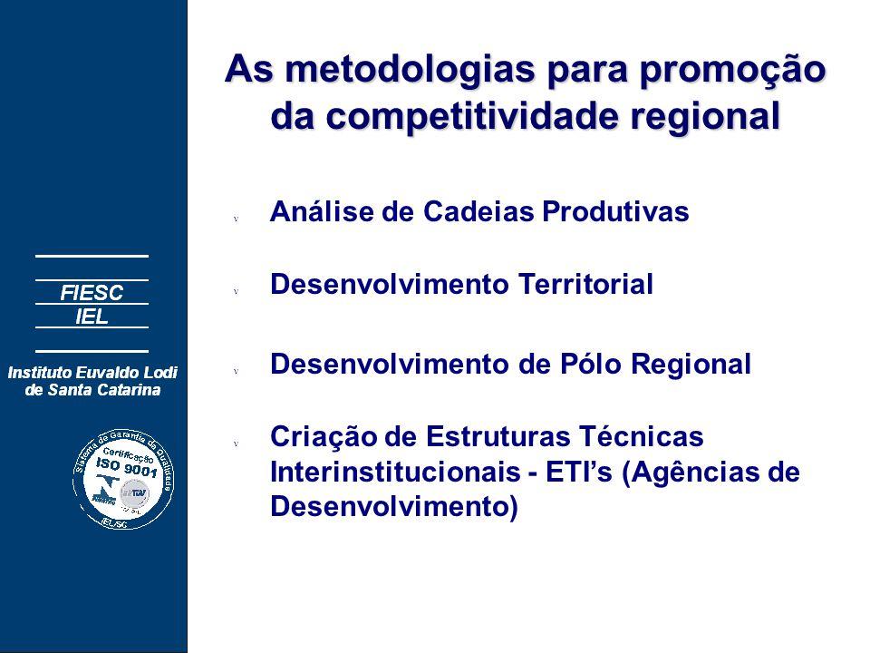 As metodologias para promoção da competitividade regional n Análise de Cadeias Produtivas n Desenvolvimento Territorial n Desenvolvimento de Pólo Regional n Criação de Estruturas Técnicas Interinstitucionais - ETI's (Agências de Desenvolvimento)