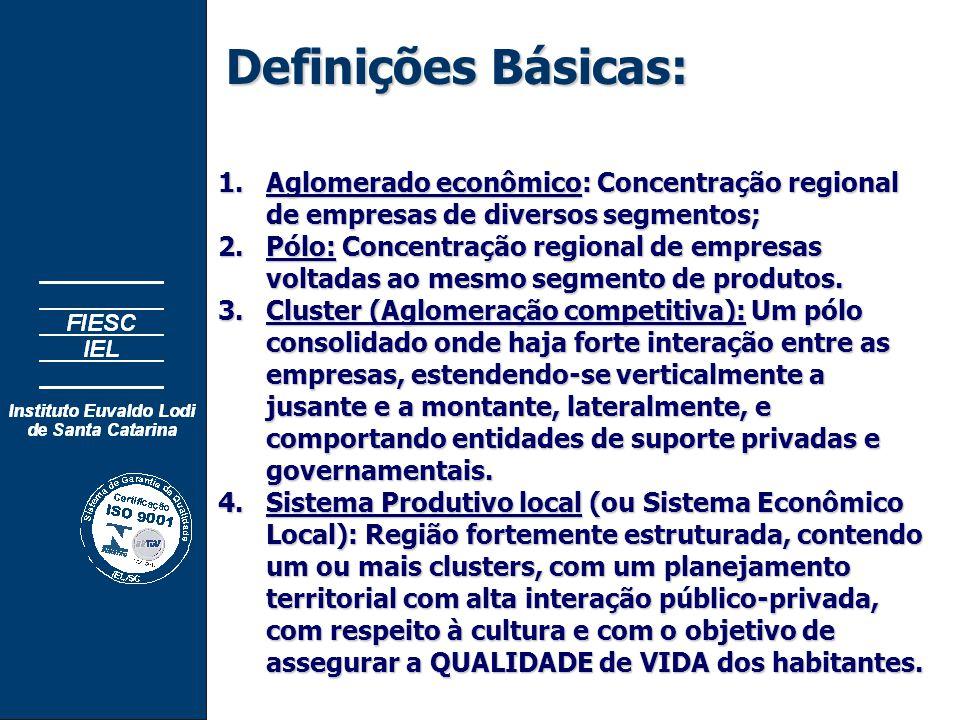 Definições Básicas: 1.Aglomerado econômico: Concentração regional de empresas de diversos segmentos; 2.Pólo: Concentração regional de empresas voltadas ao mesmo segmento de produtos.
