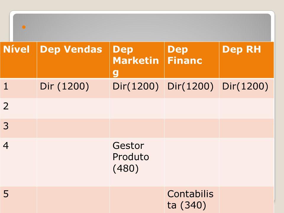 Matriz de funções NívelDep VendasDep Marketin g Dep Financ Dep RH 1Dir (1200) 2 3 4Gestor Produto (480) 5Contabilis ta (340) 6Resp Processa mento (160