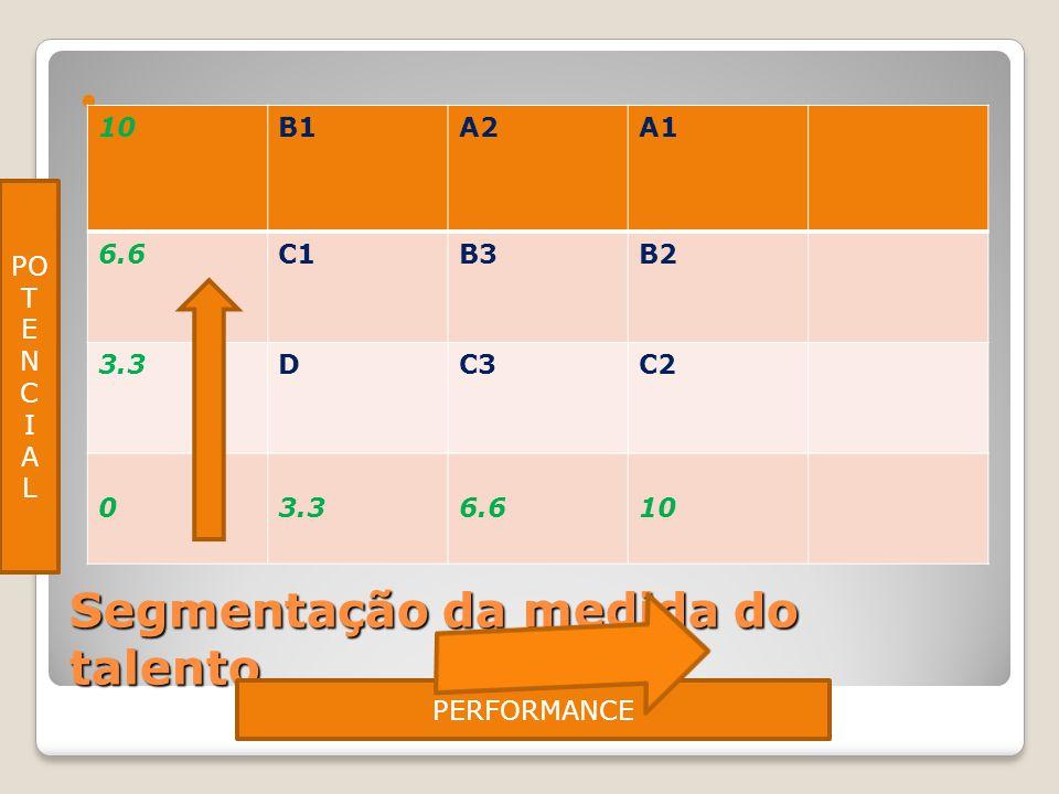 Segmentação da medida do talento 10B1A2A1 6.6C1B3B2 3.3DC3C2 03.3 6.610 PERFORMANCE PO T E N C I A L