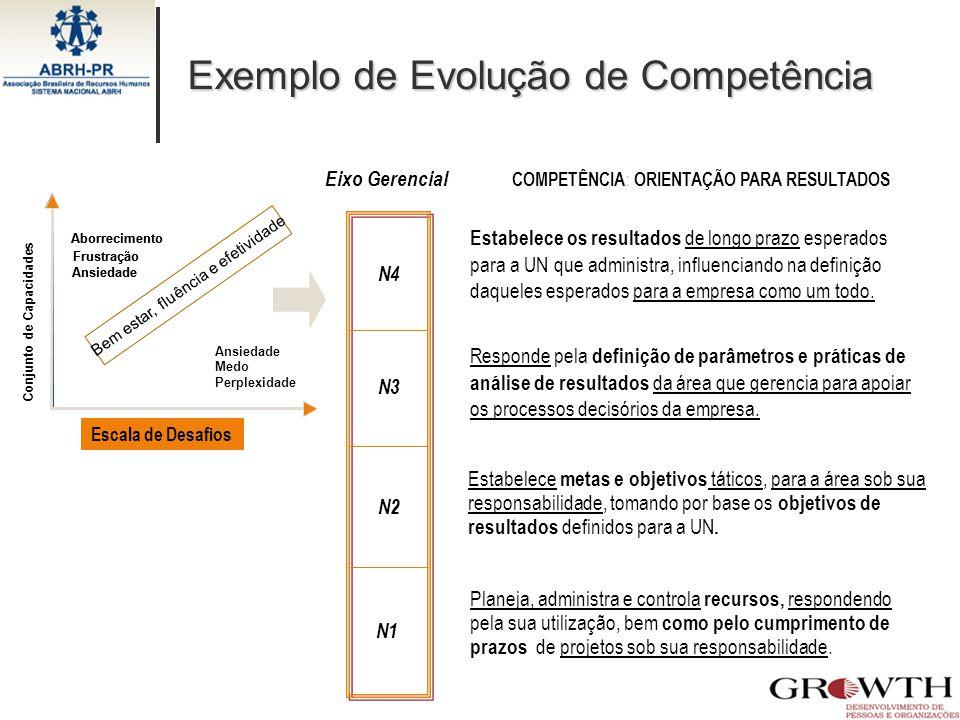 COMPETÊNCIA: ORIENTAÇÃO PARA RESULTADOS N4 N3 N2 N1 Exemplo de Evolução de Competência Estabelece os resultados de longo prazo esperados para a UN que