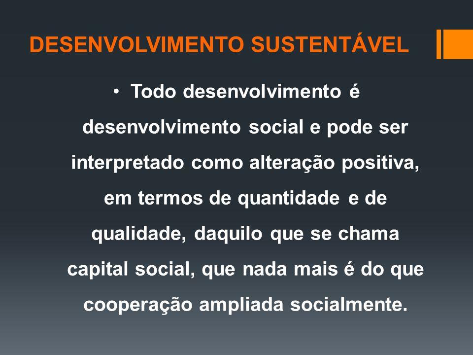 Todo desenvolvimento é desenvolvimento social e pode ser interpretado como alteração positiva, em termos de quantidade e de qualidade, daquilo que se chama capital social, que nada mais é do que cooperação ampliada socialmente.