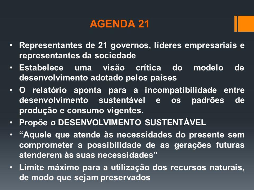 Representantes de 21 governos, líderes empresariais e representantes da sociedade Estabelece uma visão crítica do modelo de desenvolvimento adotado pe