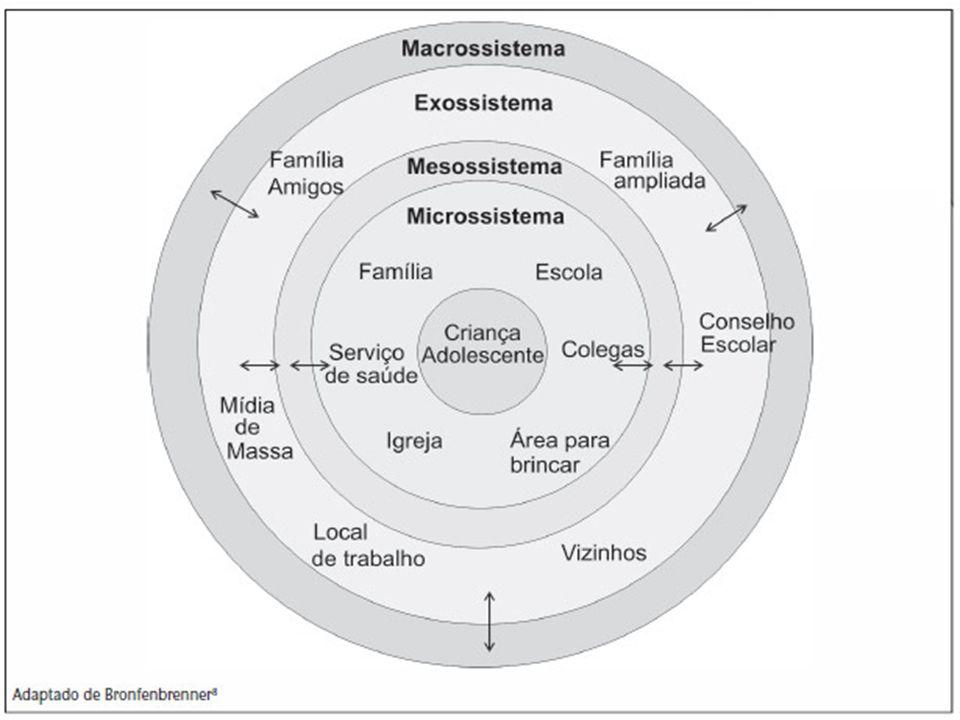Microssistema: constitui-se de ambientes do ciclo de relações mais próximas do sujeito. Mesossistema: consiste nas inter-relações entre dois ou mais m