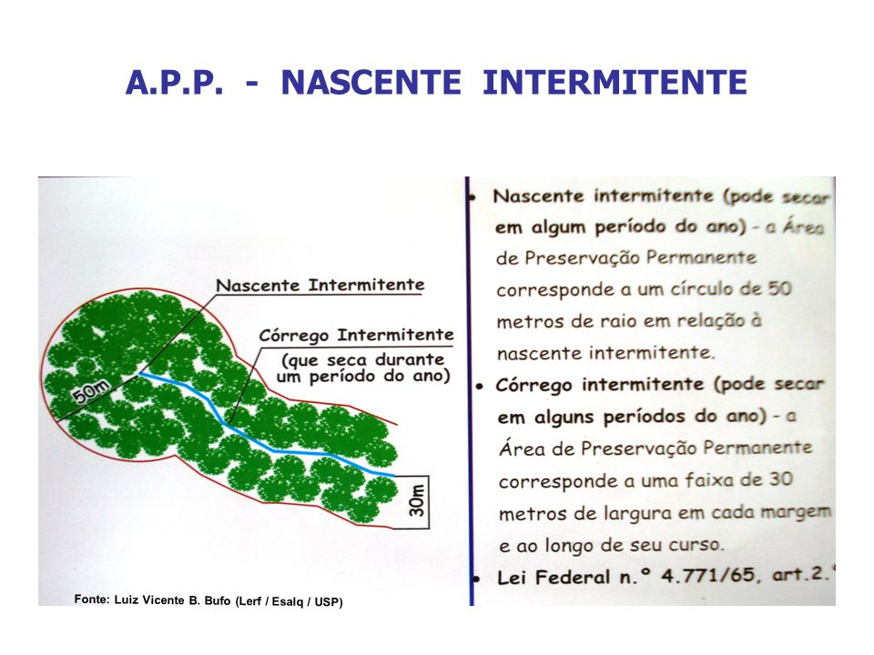 A.P.P. - NASCENTE INTERMITENTE Fonte: Luiz Vicente B. Bufo (Lerf / Esalq / USP)