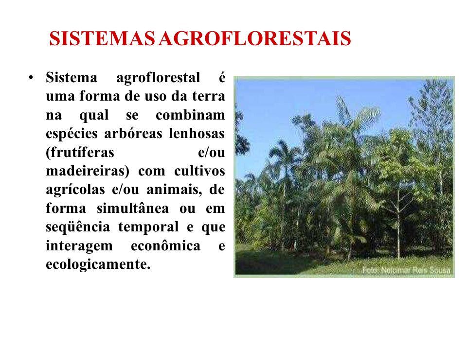 SISTEMAS AGROFLORESTAIS Sistema agroflorestal é uma forma de uso da terra na qual se combinam espécies arbóreas lenhosas (frutíferas e/ou madeireiras)