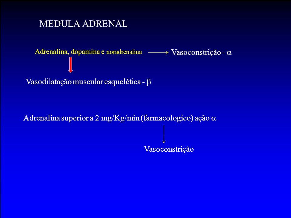 MEDULA ADRENAL Adrenalina, dopamina e noradrenalina Vasodilatação muscular esquelética -  Vasoconstrição -  Adrenalina superior a 2 mg/Kg/min (farma