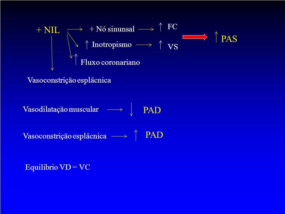 + Nó sinunsal FC Inotropismo VS PAS Fluxo coronariano Vasodilatação muscular PAD Vasoconstrição esplâcnica PAD Equilibrio VD = VC