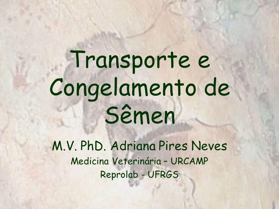 Transporte e Congelamento de Sêmen M.V. PhD.