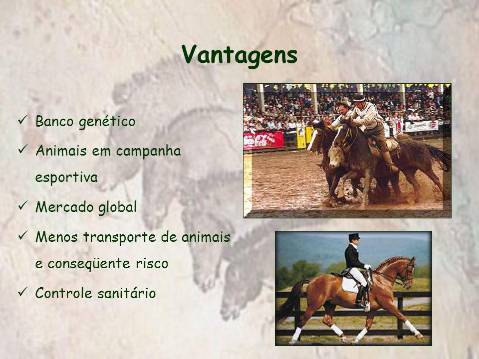 Vantagens Banco genético Animais em campanha esportiva Mercado global Menos transporte de animais e conseqüente risco Controle sanitário