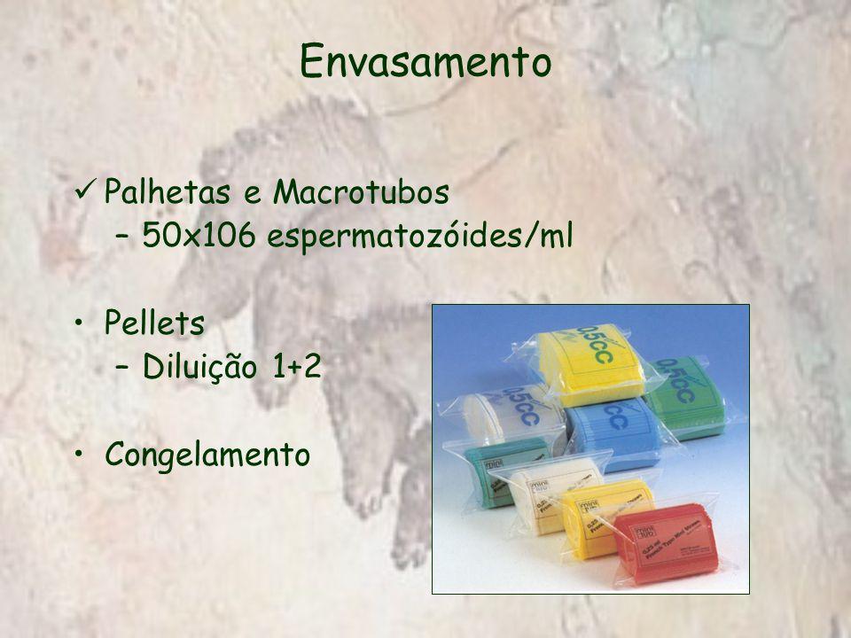 Envasamento Palhetas e Macrotubos –50x106 espermatozóides/ml Pellets –Diluição 1+2 Congelamento
