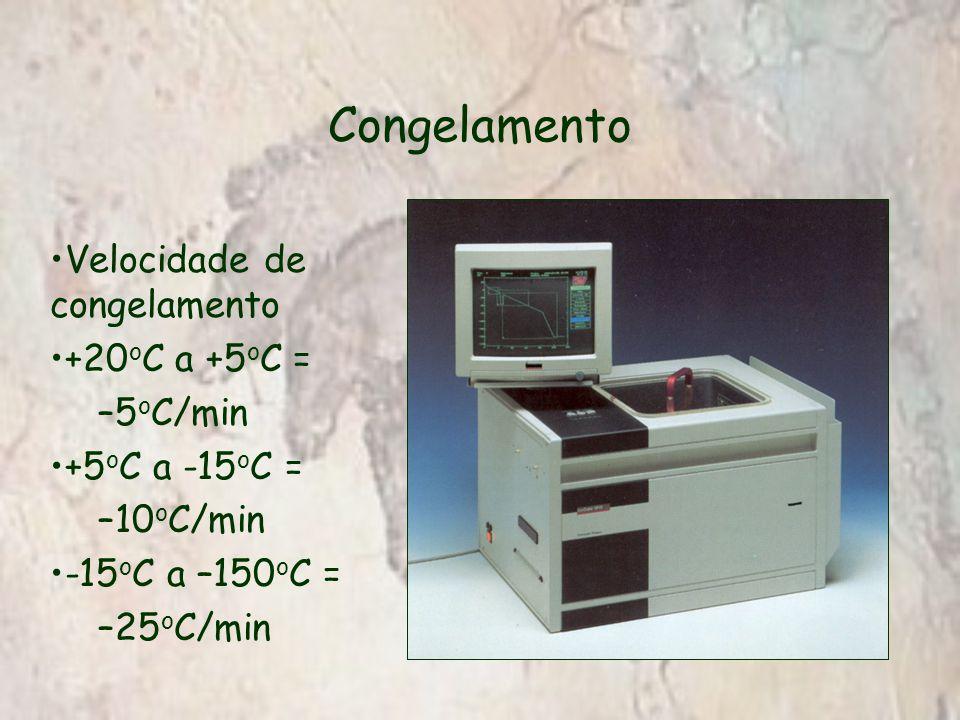 Congelamento Velocidade de congelamento +20 o C a +5 o C = –5 o C/min +5 o C a -15 o C = –10 o C/min -15 o C a –150 o C = –25 o C/min