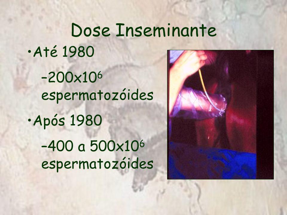 Dose Inseminante Até 1980 –200x10 6 espermatozóides Após 1980 –400 a 500x10 6 espermatozóides