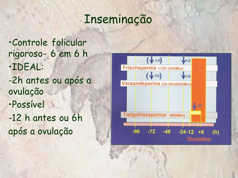 Inseminação Controle folicular rigoroso- 6 em 6 h IDEAL: -2h antes ou após a ovulação Possível -12 h antes ou 6h após a ovulação