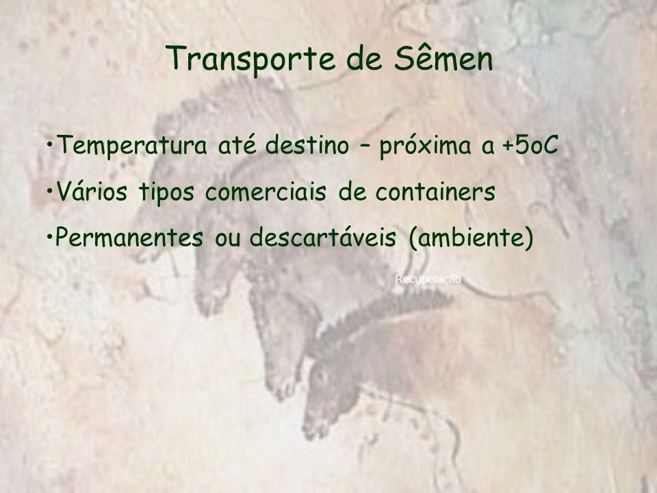 Transporte de Sêmen Recuperação Temperatura até destino – próxima a +5oC Vários tipos comerciais de containers Permanentes ou descartáveis (ambiente)