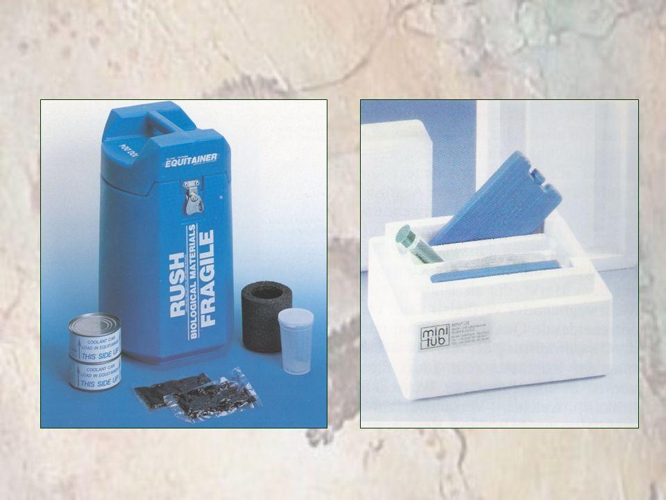 Diluente INRA 82 –Glicose 5g –Lactose 300mg –Rafinose 300mg –Citrato Trisód.