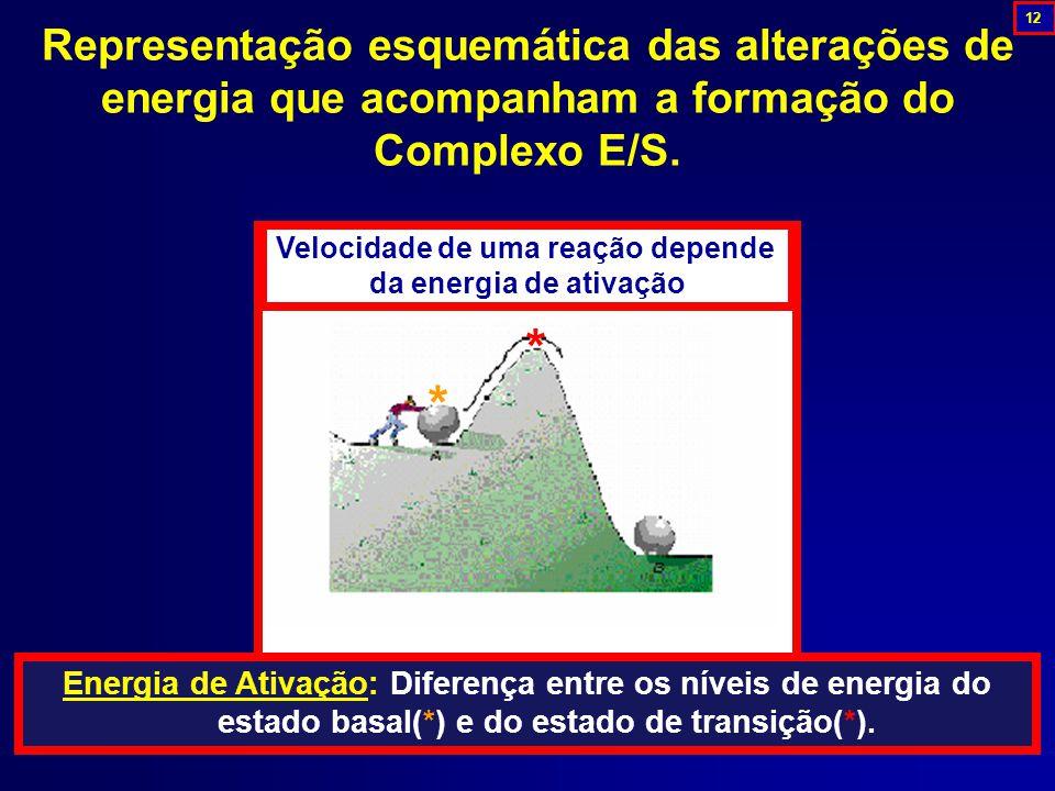 Representação esquemática das alterações de energia que acompanham a formação do Complexo E/S.