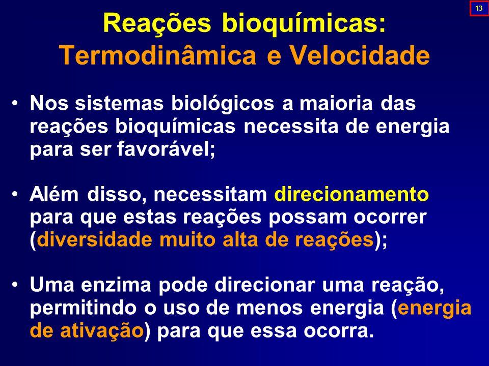 Nos sistemas biológicos a maioria das reações bioquímicas necessita de energia para ser favorável; Além disso, necessitam direcionamento para que estas reações possam ocorrer (diversidade muito alta de reações); Uma enzima pode direcionar uma reação, permitindo o uso de menos energia (energia de ativação) para que essa ocorra.