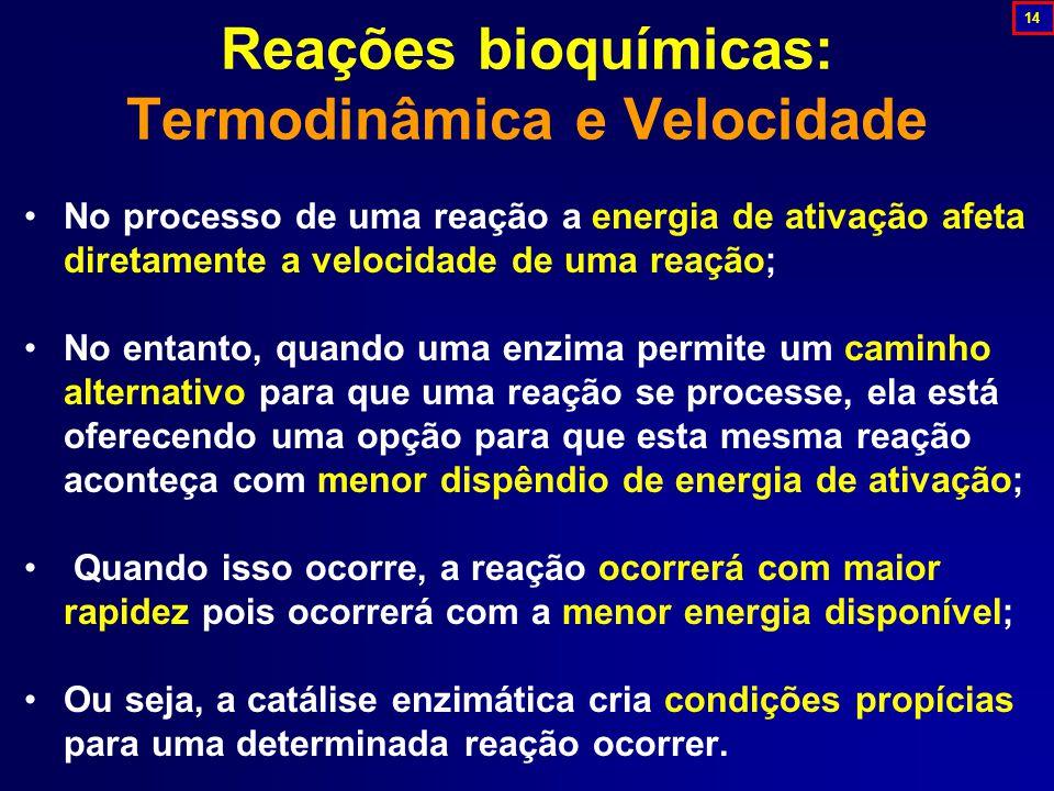 No processo de uma reação a energia de ativação afeta diretamente a velocidade de uma reação; No entanto, quando uma enzima permite um caminho alternativo para que uma reação se processe, ela está oferecendo uma opção para que esta mesma reação aconteça com menor dispêndio de energia de ativação; Quando isso ocorre, a reação ocorrerá com maior rapidez pois ocorrerá com a menor energia disponível; Ou seja, a catálise enzimática cria condições propícias para uma determinada reação ocorrer.