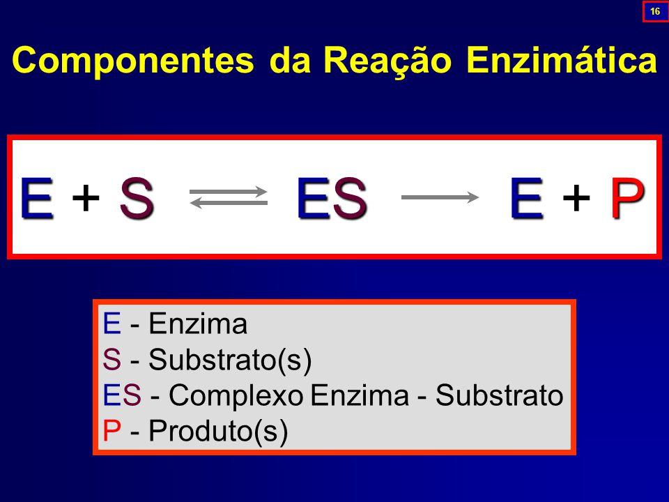 Componentes da Reação Enzimática E + S ES E + P E - Enzima S - Substrato(s) ES - Complexo Enzima - Substrato P - Produto(s) 16