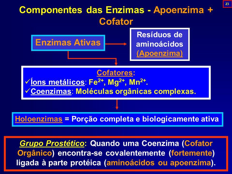 Componentes das Enzimas - Apoenzima + Cofator Grupo Prostético: Quando uma Coenzima (Cofator Orgânico) encontra-se covalentemente (fortemente) ligada à parte protéica (aminoácidos ou apoenzima).