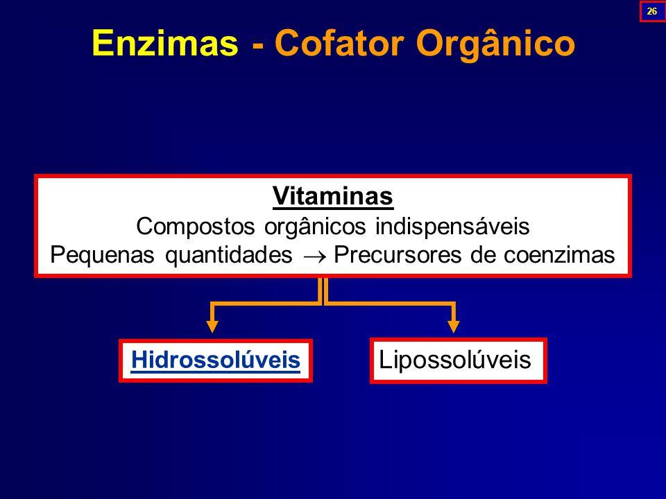 Enzimas - Cofator Orgânico Hidrossolúveis Lipossolúveis Vitaminas Compostos orgânicos indispensáveis Pequenas quantidades  Precursores de coenzimas 26