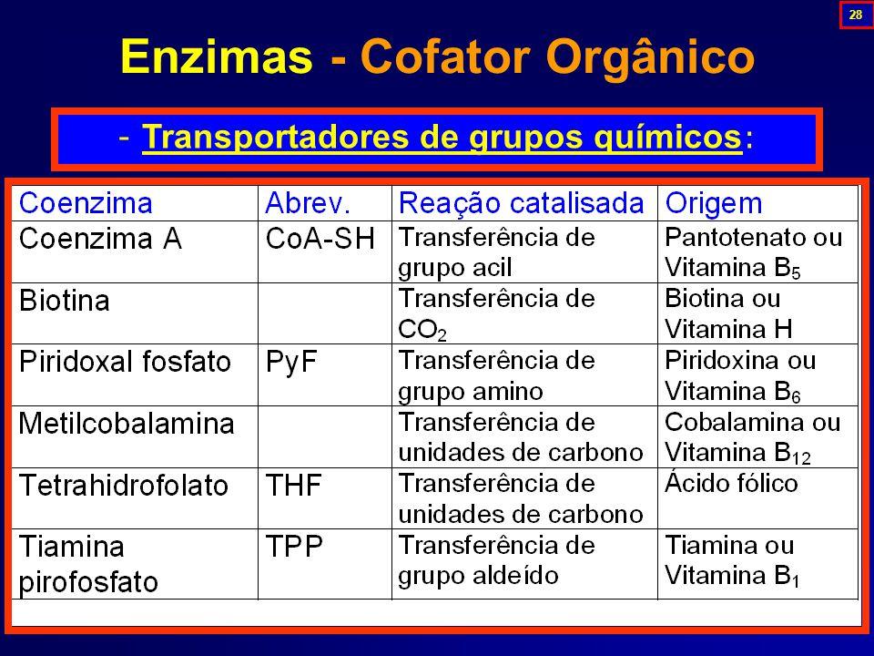 - Transportadores de grupos químicos : Enzimas - Cofator Orgânico 28