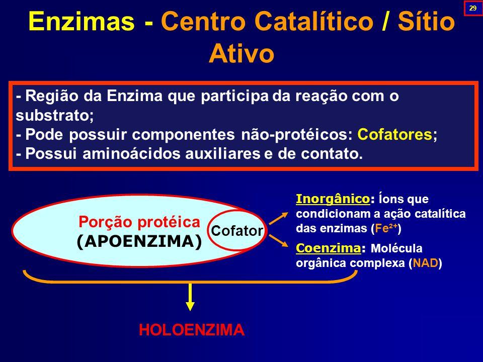 - Região da Enzima que participa da reação com o substrato; - Pode possuir componentes não-protéicos: Cofatores; - Possui aminoácidos auxiliares e de contato.